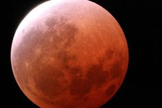 """First Total Lunar Eclipse of 2014 -On Oct. 8, Interested skywatchers should attempt to see the total eclipse of the moon and the rising sun simultaneously. The little-used name for this effect is called a """"selenelion,"""" a phenomenon that celestial geometry says cannot happen."""