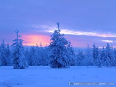 Blue moment in Lapland in Finland (at the arctic circle line in Rovaniemi) Winter Szenen, Winter Magic, Travel Images, Travel Photos, Santa Claus Village, Photo Voyage, Finland Travel, Arctic Circle, Snow Scenes