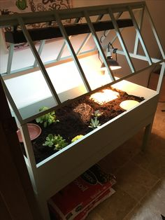 My homemade tortoise table for my Russian Tortoise
