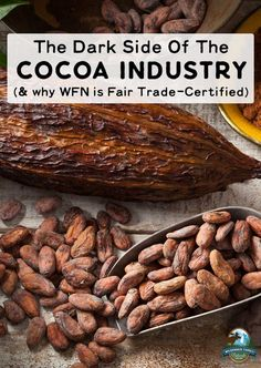 The Dark Side Of The Cocoa Industry (& Why WFN Is Fair Trade-Certified) | Without the cacao bean, we wouldn't have chocolate. Unfortunately, beneath the rich deliciousness of chocolate lies the dark side of the cocoa industry. We must know what goes on in the cocoa industry as we strive to make ethical, sustainable choices for our families. | WildernessFamilyNaturals.com