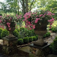 Elevate your containers for impact. These raised urns are filled with pink verbenas and white bacopas.