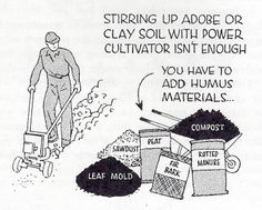 gardening - detail from vintage Sunset Magazine gardening book