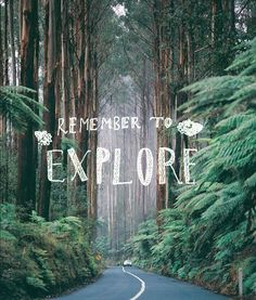 Remember to explore. Take a trip, go camping, lie in the grass and gaze at the stars. Life and adventure is all around you. The Black Spur - Victoria, Australia Belle Photo, Travel Quotes, Hiking Quotes, Beautiful Words, The Great Outdoors, Decir No, Travel Inspiration, Places To Go, Around The Worlds