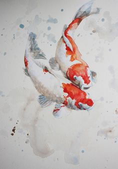 Visit the post for more. Art Koi, Fish Art, Koi Painting, Watercolour Painting, Watercolors, Watercolor Fish, Watercolor Animals, Koi Kunst, Fish Drawings