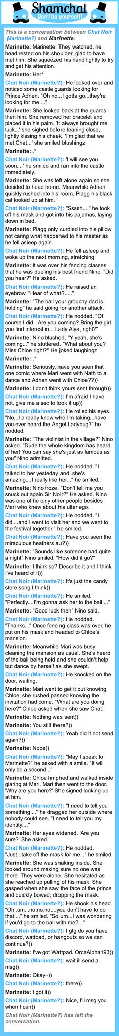 A conversation between Marinette and Chat Noir (Marinette?)