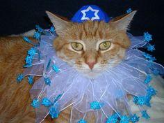 Hanukkah Decorating Ideas | ... to Celebrating Hanukkah - Chanukah Entertaining Ideas and Decorations