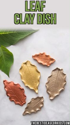 LEAF CLAY DISH - make this beautiful trinket dishes from leaves! Beautiful DIY c. CLAY DISH - make this beautiful trinket dishes from leaves! Diy Clay, Clay Crafts, Diy And Crafts, Crafts For Kids, Autumn Crafts Kids, Autumn Leaves Craft, Art And Craft, Autumn Art, Paper Craft