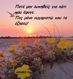 Greek Quotes, Love Words, Picture Video, Poems, Encouragement, Inspirational Quotes, Wisdom, Letters, Appreciation