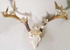 Sanibel Floral Seashell Antlers - divya