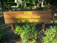 Picture Gallery: The Rose Garden at Historic Shinn Park in Fremont, Ca.