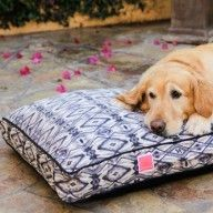 """""""Fleabag Bed!"""" And a precious pup"""