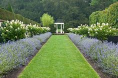 At Longwood Gardens, in Kennett Square, Pennsylvania, a wide mown path is planted with matching rows of Caryopteris 'Longwood Blue' and Hydrangea paniculata, creating a dramatic and seasonally changing allée that leads the visitor to a formal pagoda. Modern Landscape Design, Traditional Landscape, Garden Landscape Design, Modern Landscaping, Backyard Landscaping, Formal Gardens, Outdoor Gardens, Amazing Gardens, Beautiful Gardens