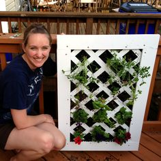 How to make a vertical garden.