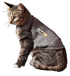 ThunderShirt For Cats * Find out more details by clicking the image : Cat sweater