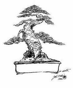 John Naka's drawing