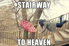Stairway to Heaven. Sorry, this is just too funny. Stairway To Heaven, Best Funny Pictures, Funny Photos, Kid Photos, Music Pictures, Funny Sites, Funny Captions, Just For Laughs, Stairways