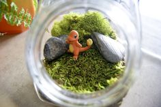 Pokemon Charmander Terrarium by MaForet.deviantart.com on @deviantART