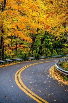 disminucion:  Beautiful Fall,Gil Druen