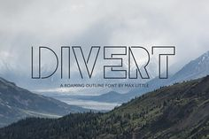 Divert by Little Fonts on @creativemarket