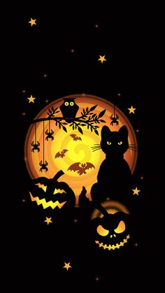 Halloween Pictures, Spooky Halloween, Happy Halloween, Halloween Decorations, Halloween Prints, Wallpaper Backgrounds, Iphone Wallpaper, Animal Wallpaper, Mural Cafe