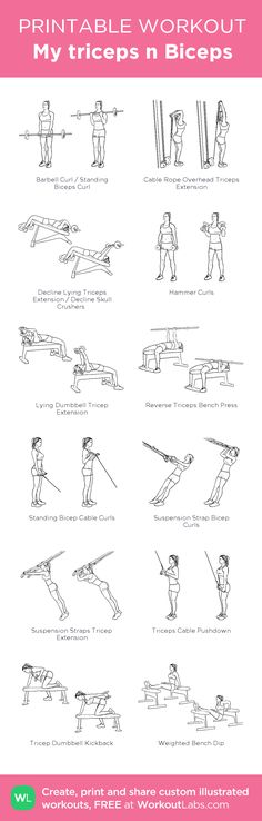 My triceps n Biceps: my visual workout created at WorkoutLabs.com • Click through to customize and download as a FREE PDF! #customworkout