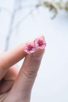 Marsala cherry blossom earrings, Women's day gift for her, Sakura earrings studs, Cherry blossom jewelry, Flower jewelry, Clay floral studs Cherry Blossom Jewelry, Best Gifts For Her, Flower Jewelry, Marsala, Ladies Day, Women's Earrings, Studs, Clay, Unique Jewelry