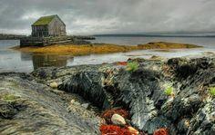 Blue Rocks, Nova Scotia Nova Scotia, Atlantic Canada, My Art Studio, Prince Edward Island, New Brunswick, Blues Rock, Newfoundland, Canada Travel, Travel Goals