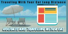 Travelling With Your Cat In The Car Long Distance Dog Rash, Fleas, Long Distance, Pet Care, Pet Dogs, Travelling, Cats, Gatos, Cat