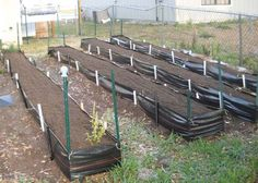 Low-cost raised beds