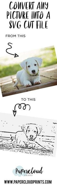 Turn any image into a SVG Cut File!