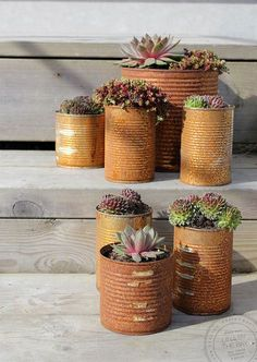 Rusty tin can pots, by Lina by the Bay. Flower Planters, Diy Planters, Flower Pots, Planter Pots, Deco Nature, Market Garden, Creation Deco, Garden Projects, Garden Pots