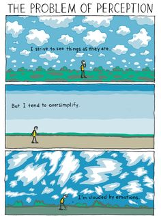 Clouded by emotions - INCIDENTAL COMICS: The Problem of Perception