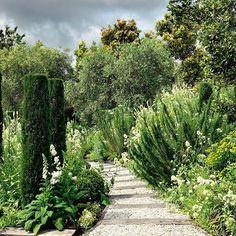Who's dedicating today to the garden? #nzhouseandgarden #garden #gardenpath