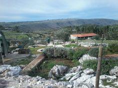 Quinta da Escola - Alvados