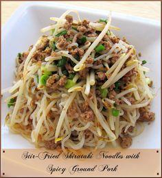 ZERO CARB SHIRATAKI NOODLES RECIPES | Shirataki Noodle Recipes