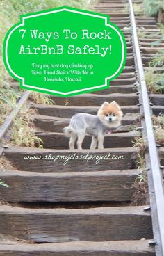 I'm currently on a long trip and have a couple of pointers on how to travel safely while using AirBnB Staycation #travel #frugal Frugal Staycation Ideas Staycation #travel #frugal Frugal Staycation Ideas