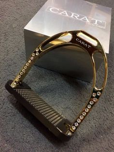 24 carat gold stirrups. Oh, if only I was rich :(