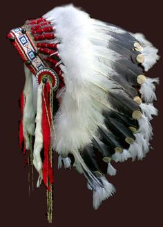 buffalo indian art | This double trailer headdress is in a private collection in Wyoming