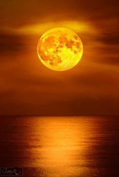 Moonlight Reflections over Palm Beach, Florida