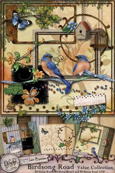Fabulous little birds and birdcages in this digital scrapbooking kit