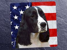 English Springer Spaniel Black & White Patriotic Coasters by Barbara Augello for Dogimage