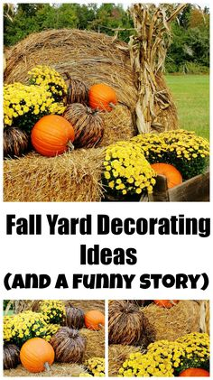 Here's some inspiration for fall from our back pasture.  We decorated with pumpkins and mums and dried corn stalks (and wait until you read the story)!