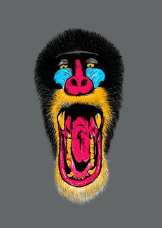 Mandril on Behance