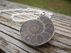 Ancient Ammonite Fossil necklace. Large by SundustStudio on Etsy, $35.00