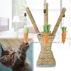 Rope Cat Scratcher