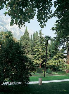 A foreshortening of the private garden of Villa Feltrinelli. #lake #garda #grandhotel #villafeltrinelli #garden #nature #trees