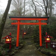 #Hakone #shrine