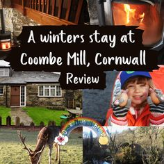 A winters stay at Coombe Mill, Cornwall Mill Farm, Farm Holidays, Child Friendly, Staycation, Outdoor Fun, How To Start A Blog, Cornwall, About Uk, Countryside