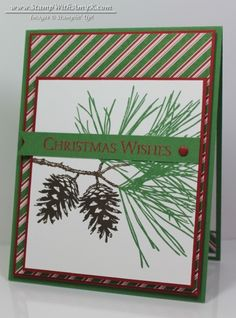 Ornamental Pine - Stampin' Up! - Stamp With Amy K