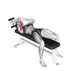 Gym Workout Chart, Gym Workout Videos, Best Cardio Workout, Triceps Workout, Gym Workouts, At Home Workouts, Martial, Home Sport, Training Motivation